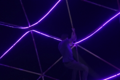 Dangling Around - Picture by Kassandra Dambacher-Willis